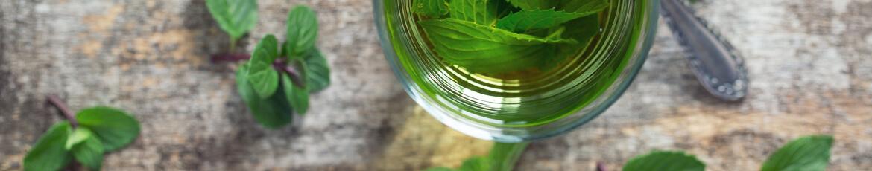 Phyto-Force Herbal Teas
