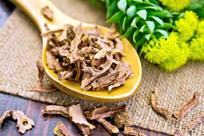 Why Rhodiola Rosea and Other Adaptogens Are Good For Us